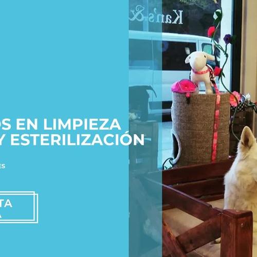 Clínica veterinaria en Manresa | Kan's& Co