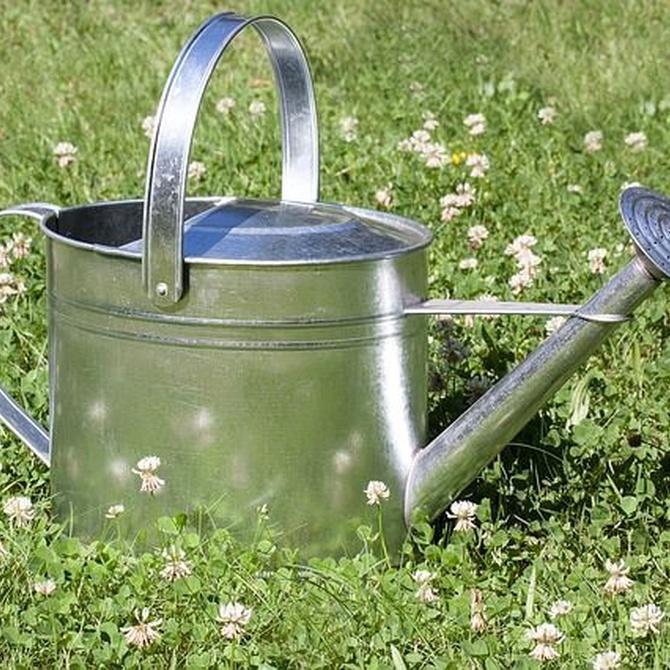 Tipos de riego para jardines (II)