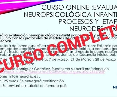 CURSO ONLINE :EVALUACIÓN NEUROPSICOLÓGICA INFANTIL POR PROCESOS Y ETAPA DEL NEURODESARROLLO