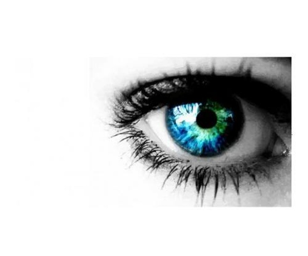 Óptico Optometrista
