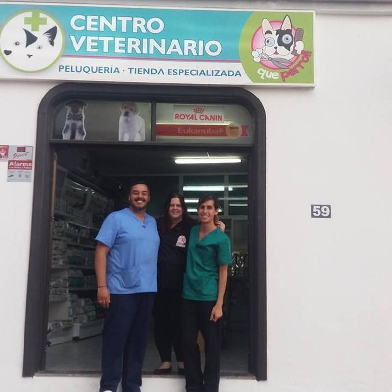 Veterinaria: Servicios de Qué Perro!! Arrecife