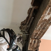 Tratamiento estructura de madera carcoma termita xilofagos