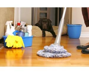 Limpieza en domicilios particulares en Asturias