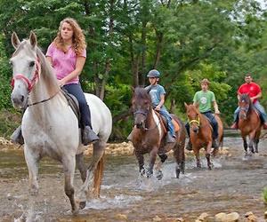 Excursiones y rutas a caballo en el entorno de Lagos de Covadonga (Asturias)