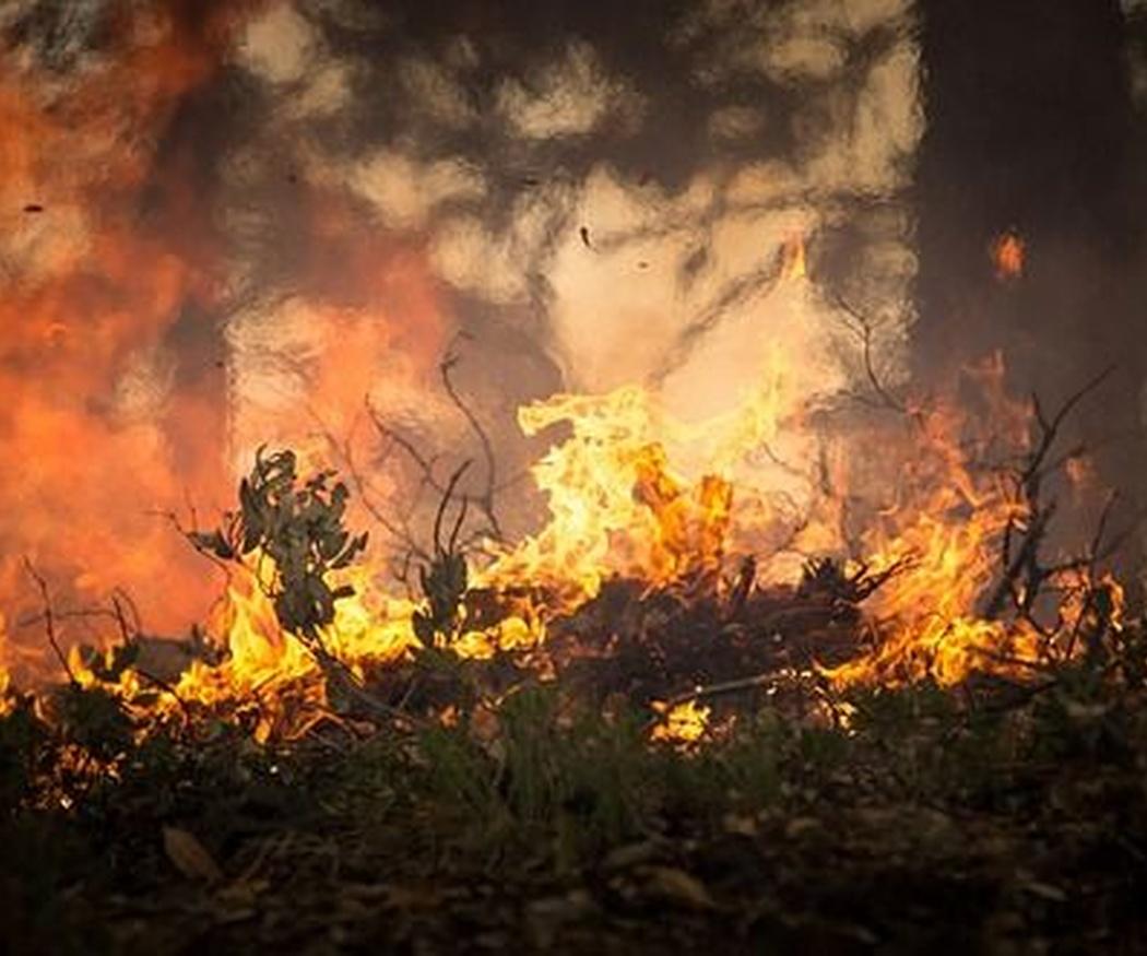 ¿Es cierto que el agua es el mejor aliado contra un incendio?