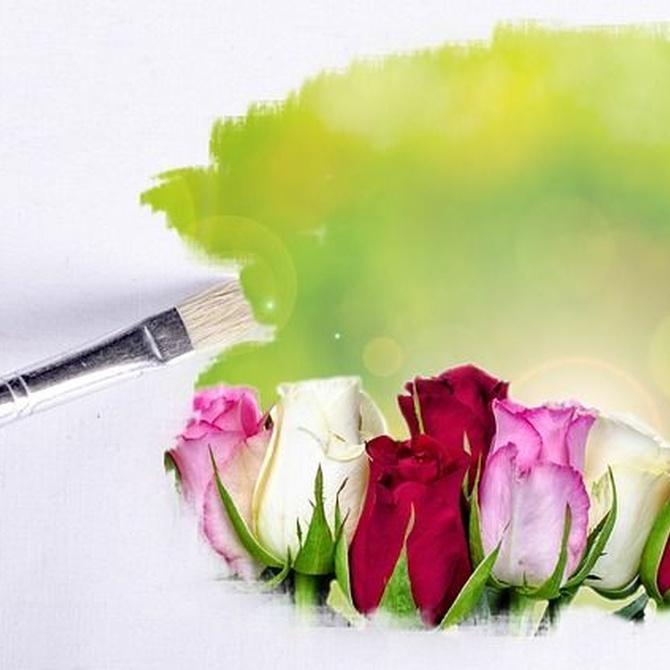 Haz que cada día sea único con flores