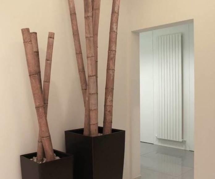 Revestimientos de paredes y suelos: Trabajos  de Sitec