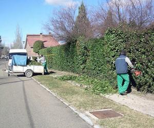 Diseño de jardines en Valladolid