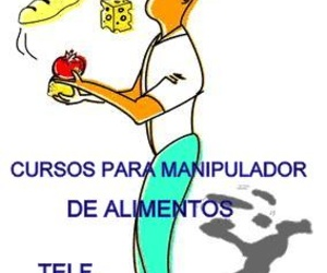 CURSOS PARA MANIPULADORES