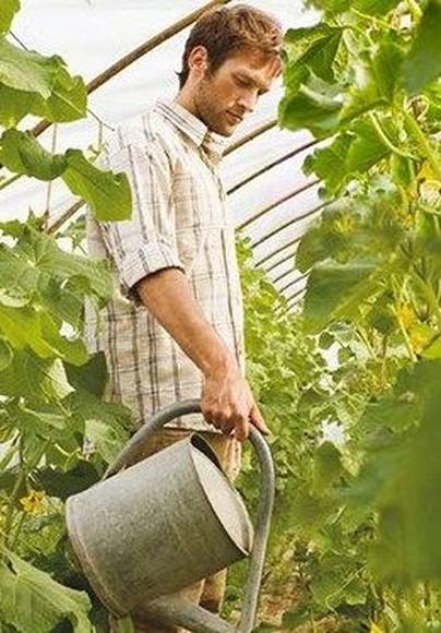 Allianz Agro Murcia