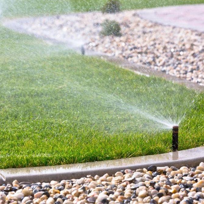 Diferentes sistemas de riego para tu jardín