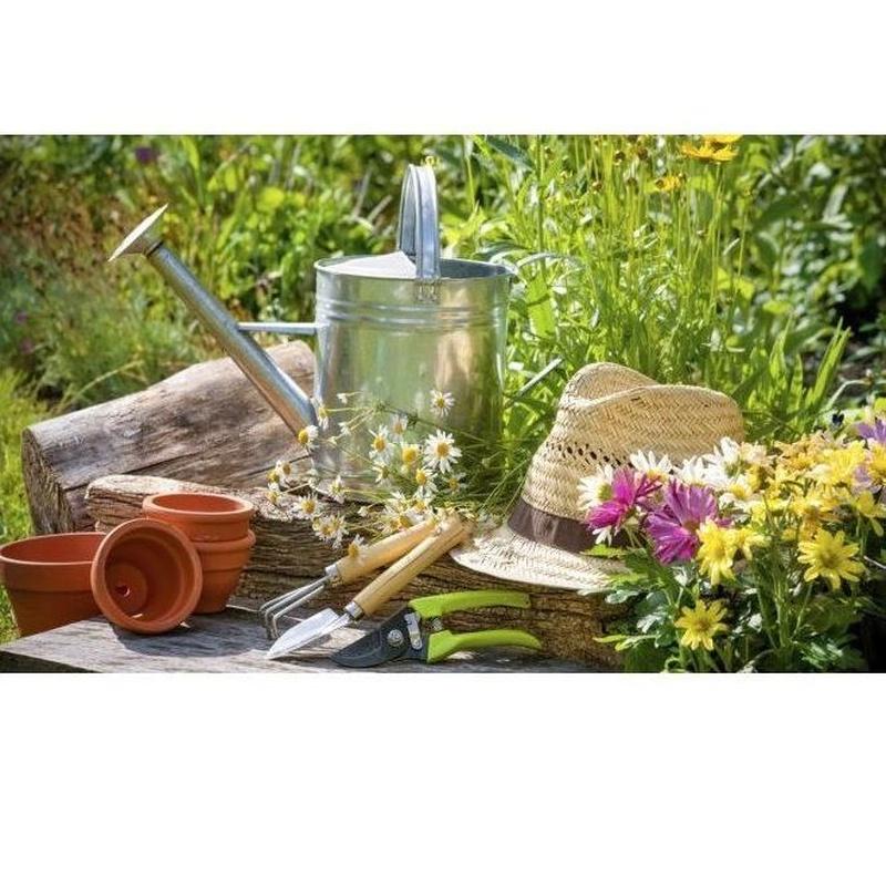 Jardinería: Productos de Casa Clemente