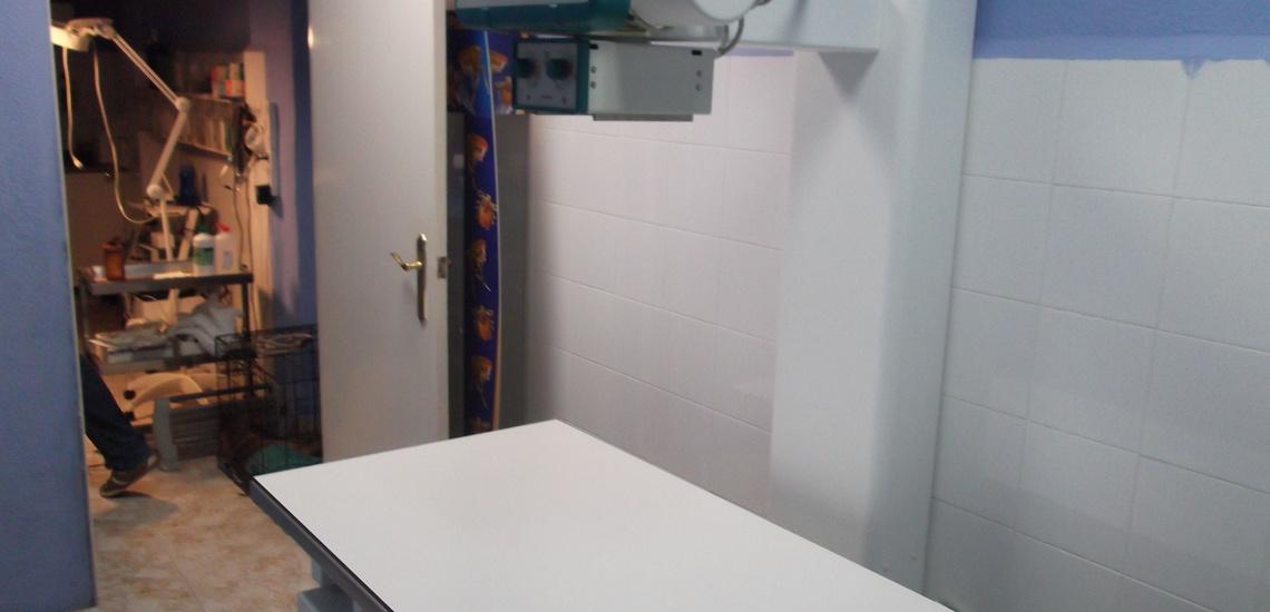 Clínica veterinaria en Llíria con servicio veterinario de rayos x y ecografías