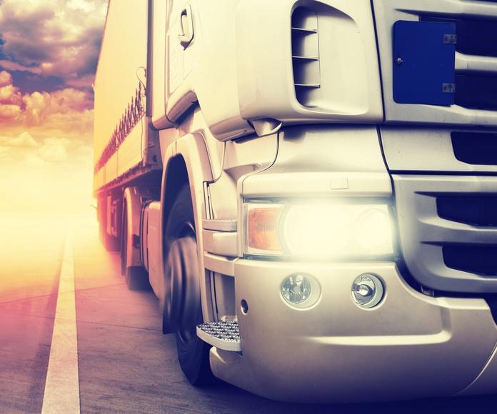 Transportes con megatráilers: Servicios de Burgos Logística S.L. - Transportes Pinilla
