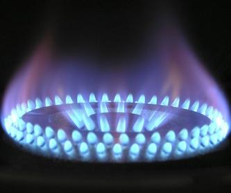 Inspecciones de gas: Servicios de Danagas