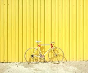 Consejos para cuidar tu bicicleta