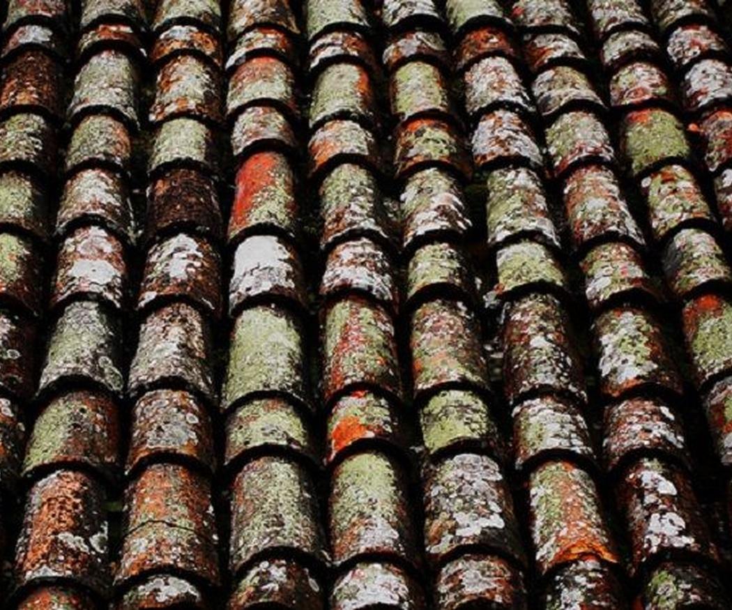 Problemas más habituales de los tejados