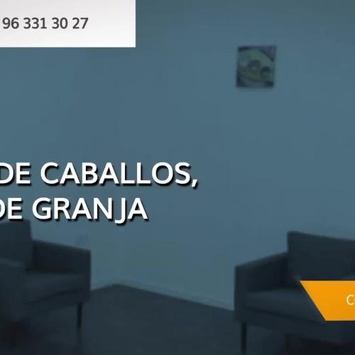 Crematorio de animales en Valencia | Cresma