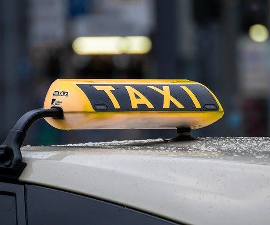 Viajar en taxi con mascotas: cómo hacerlo