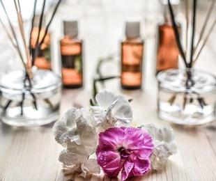 Osteopatía y Homeopatía