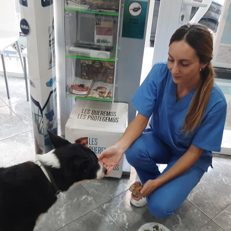 Neus Bargues -  Auxiliar Veterinaria: Servicios de Clínica Veterinaria Rocafort
