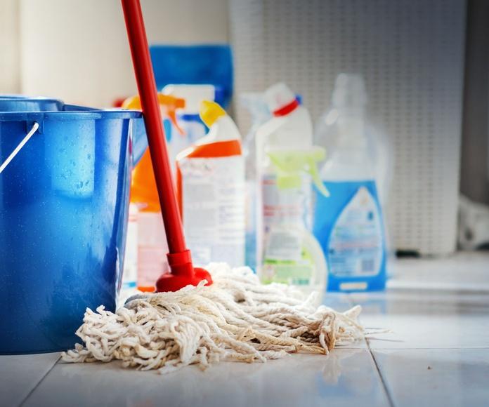 Limpieza de colegios: Servicios de Limpiezas Galaecia