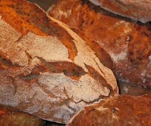Todos los productos y servicios de Fabricación y distribución de pan: Más-ke-Pan siglo XXI