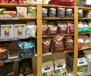 Alimentación para mascotas  en Bilbao