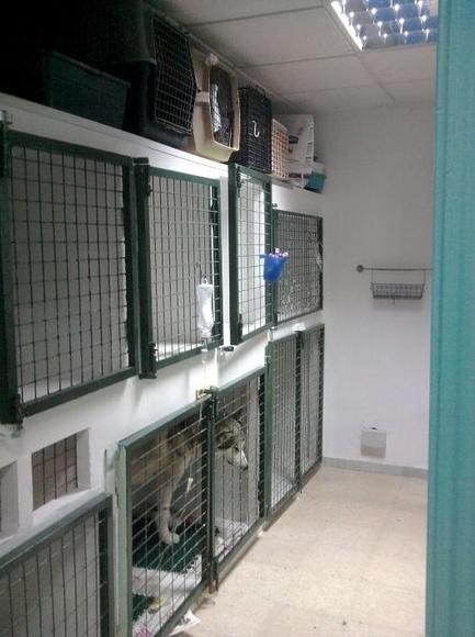 Sala de Hospitalización|default:seo.title }}
