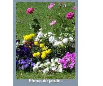 Vallados: Servicios de Zona Verde Jacetania