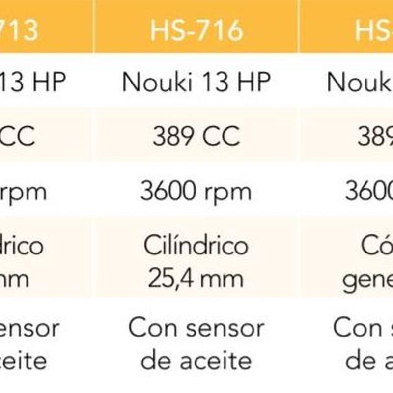 MOTOR (TIPO HONDA)389 CC 3600 RPM 13 HP EJE CILINDRICO 25.4 MM Cód. HS-716: Productos y servicios de Maquiagri