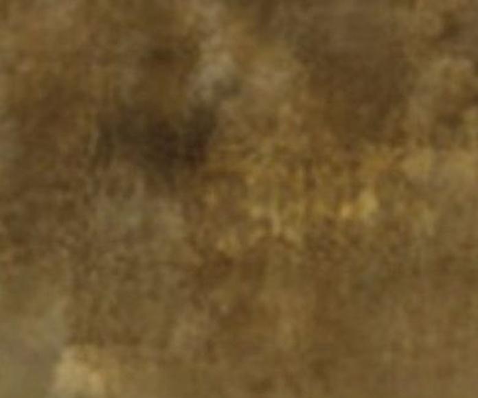VENTA E INSTALACION VINILO/PVC ASTURIAS ,MAIA OXIDO 009