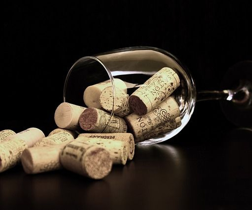El mejor maridaje con vino