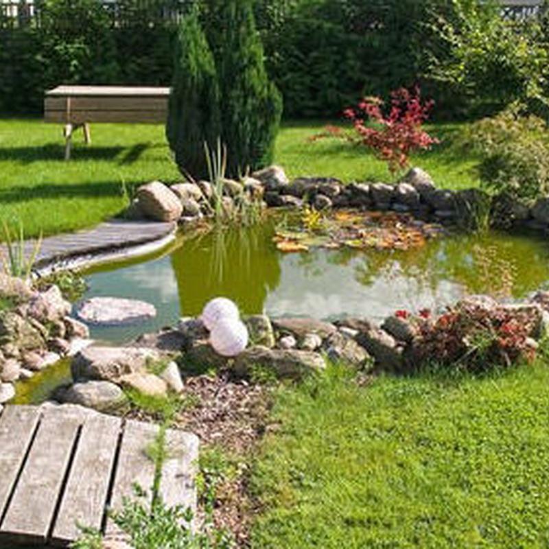 Mantenimiento de jardines: Servicios de Tinko Garbiketak