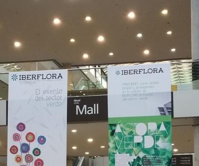 Ches Pa en Iberflora 2015