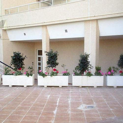 Empresas de jardineria Malaga | Plante Verde