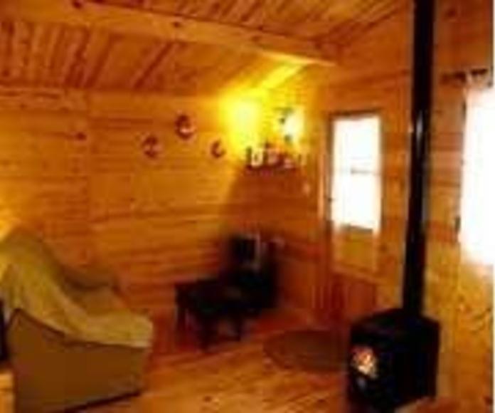 Barniz PROTECT para madera