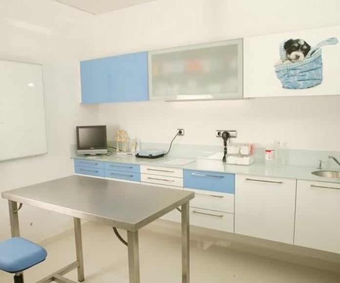 Laboratorio propio: Servicios de Hospital Veterinario La Salle Abierto 24 horas