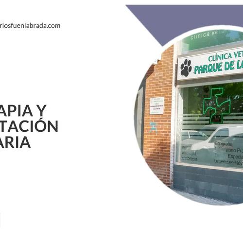 Veterinario 24h en Fuenlabrada | Clínica Veterinaria Parque de los Estados