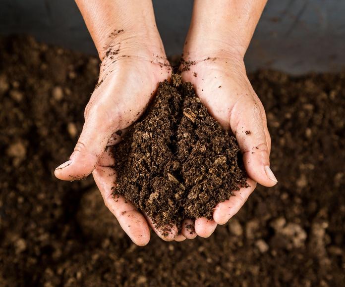 Mantenimiento de jardines: Productos y servicios de SiA Consultores Servicios Agroalimentarios