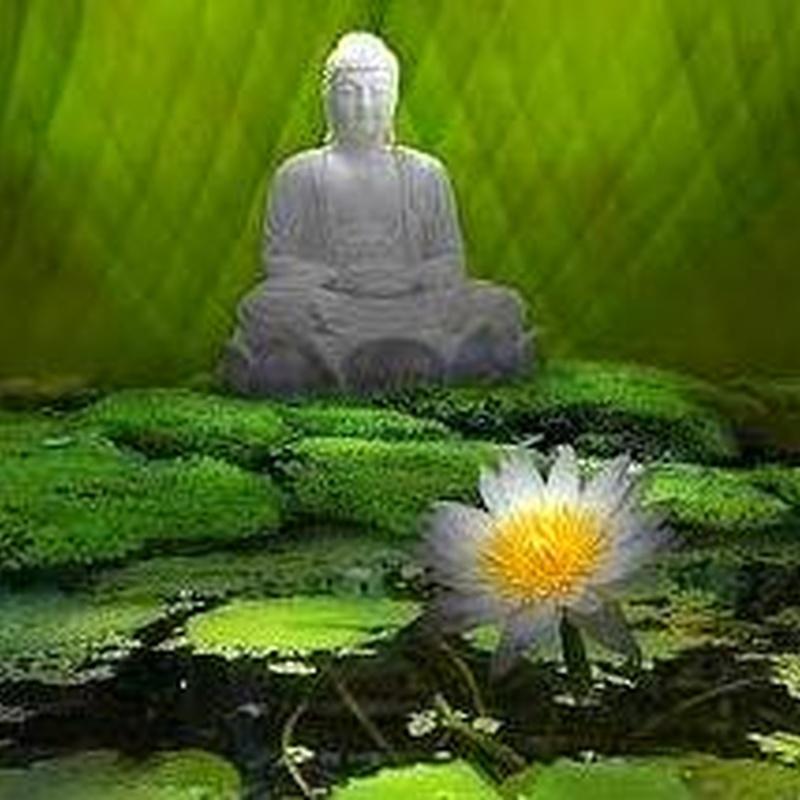 Meditación de relajación
