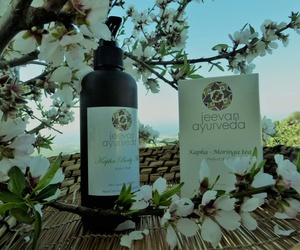 Consulta nuestros Tratamientos y productos de belleza Ayurvédicos