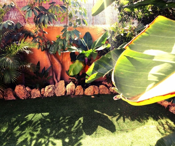 Jardín de nuestra residencia