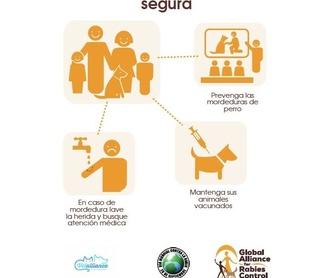 Ecografía: Servicios de Vetalliance Reus Clínica Veterinaria