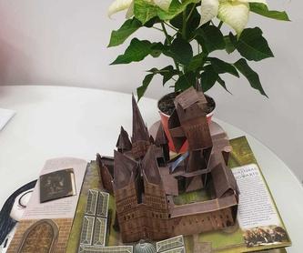 LA NAVIDAD DEL PEQUEÑO UNICORNIO: El Bosque de las Palabras de Librería Infantil El Hada Lucía
