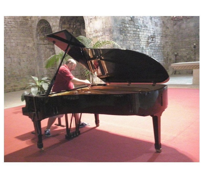 Serveis que oferim: Serveis de Afinador de Pianos E. Ferrer