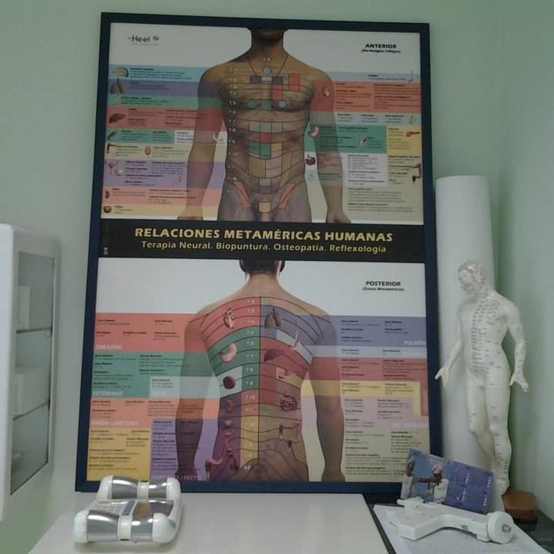 Homeosiniatría y Biopuntura: Tratamientos de Doctora Imma Falcó