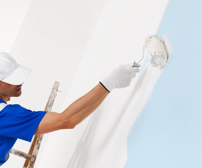 Pintura: Servicios de Reformas M. Romero