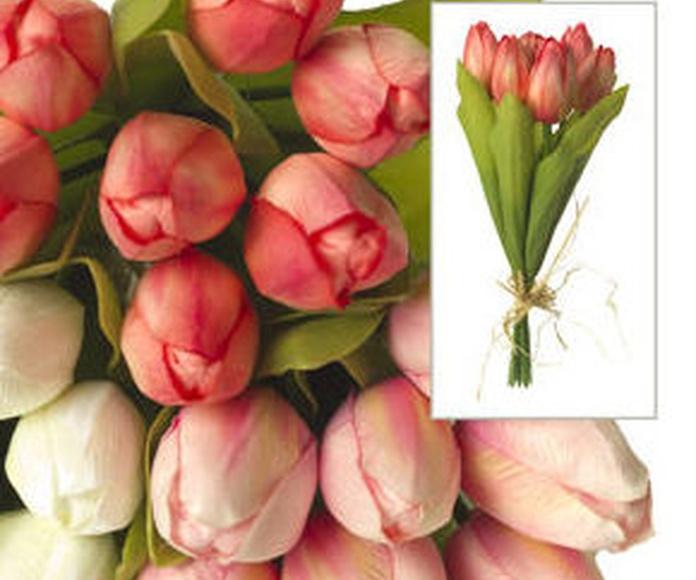 Atado Tulipanes X7