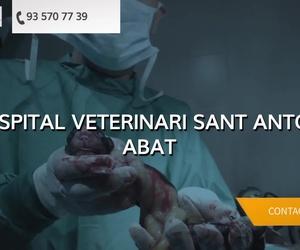 Hospital veterinario en Mollet del Vallès | Hospital Veterinari Sant Antoni Abat